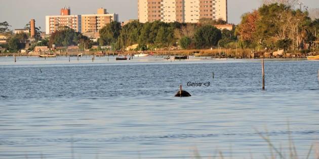 predios de rio grande visto da lagoa