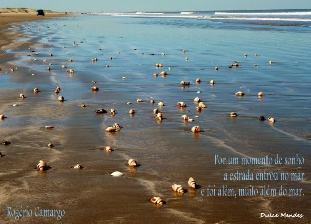 Mar enfeitado de conchas