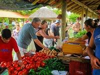 feira do produtor na praia do cassino