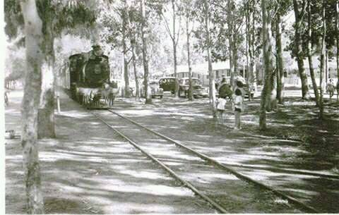Foto Antiga do Trem Passando na Avenida Rio Grande