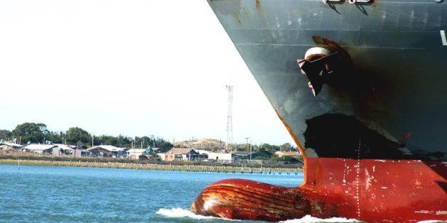 Gigante do Mar Chegando a Rio Grande