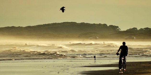 Pedalando Pela Praia Cassineira