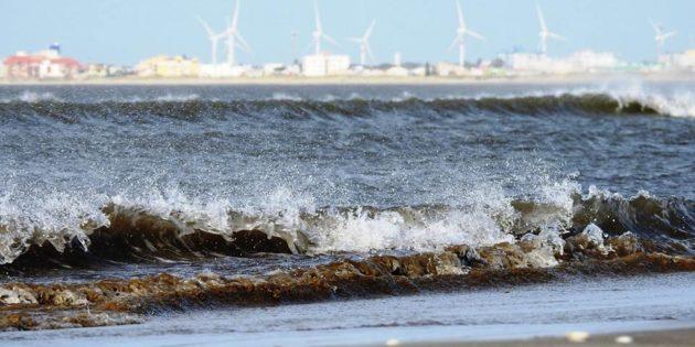 Eólicas Vistas da Beira da Praia