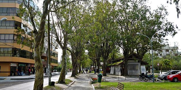 Passear na Avenida Rio Grande Cassino